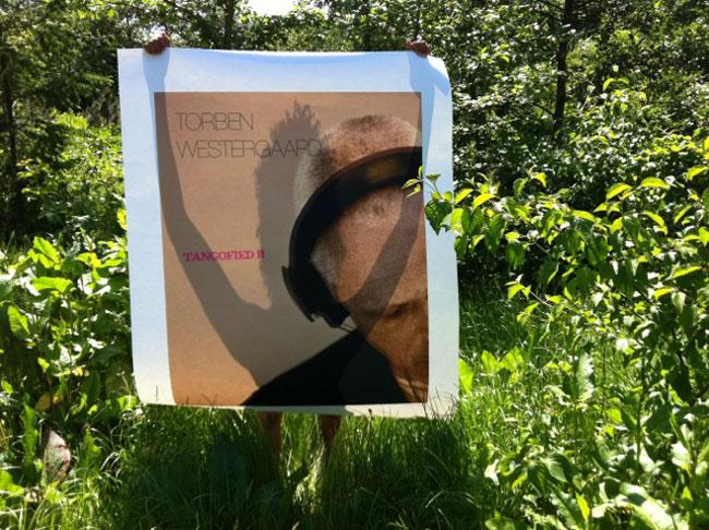 Tangofied Summer Suburb, 2014