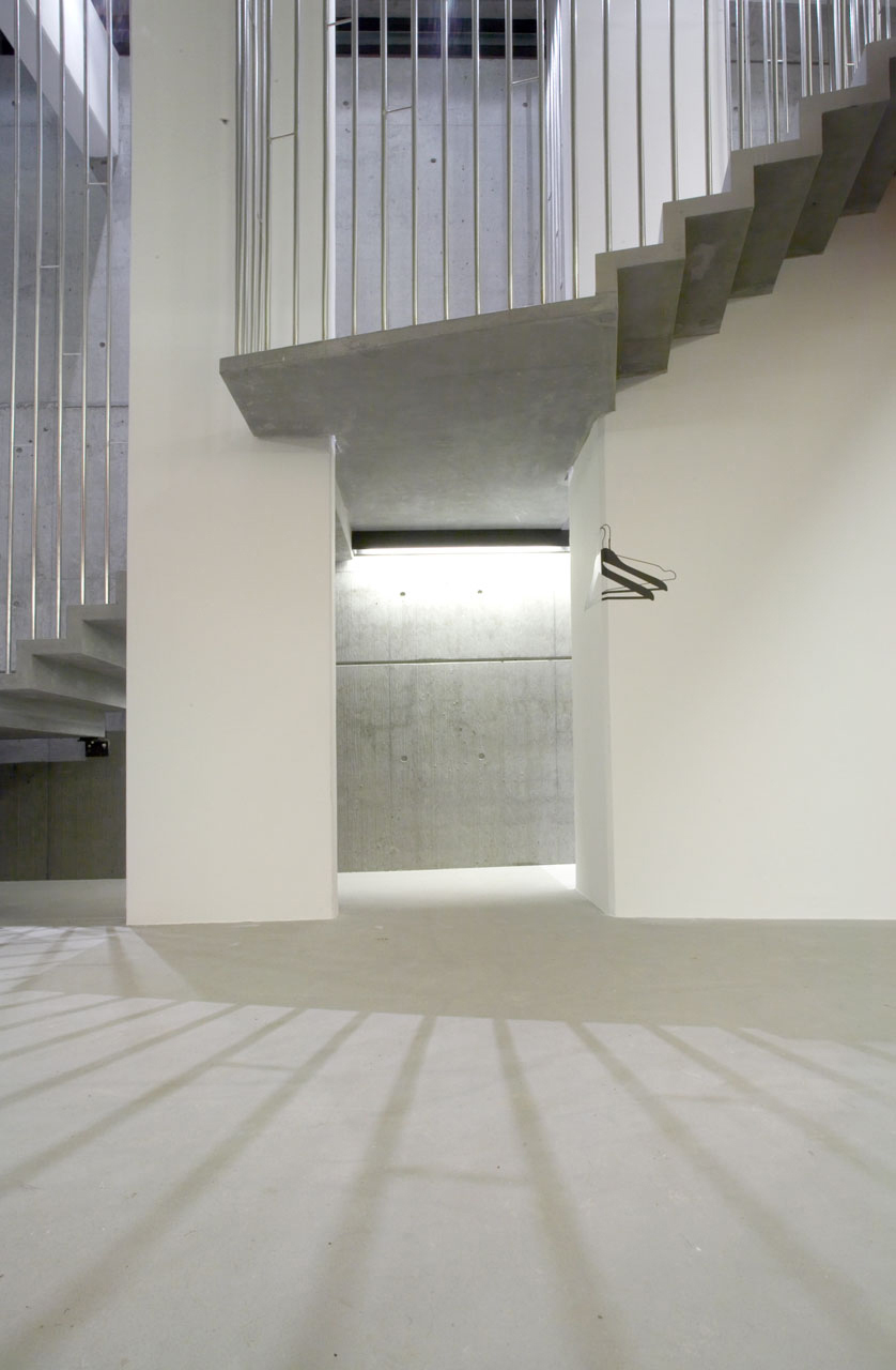 Bellinger House hall, bespoke black foil graphic, concrete staircase with polished stainless steel banisters.
